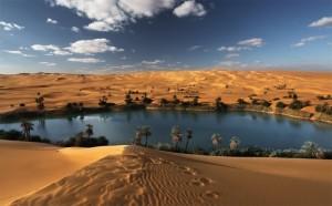 desert-oasis-780x484